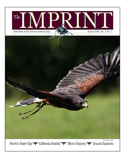 Imprint Spring COVER '09