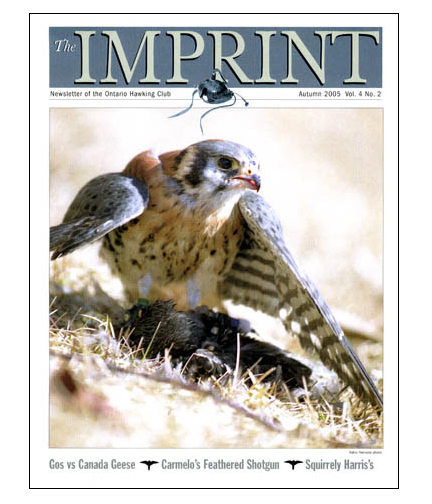 ImprintCoverKestrel